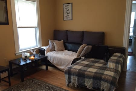 Cozy, Bright room in the heart of Cambridge! - Cambridge - Leilighet