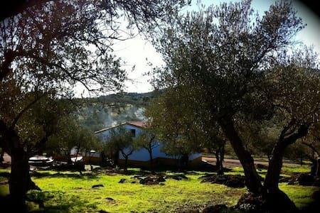 Casa de campo EL OLIVO - Hus