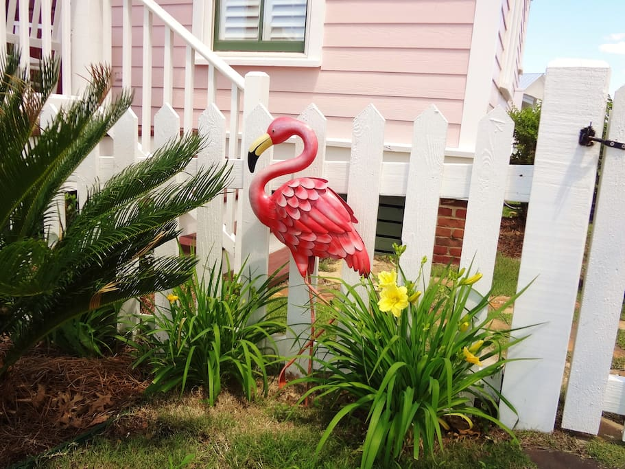 """""""Pinky"""" greets you at the front gate."""