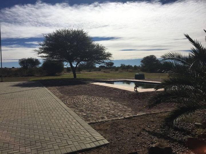 Kameeldoring Safaris - Amalia