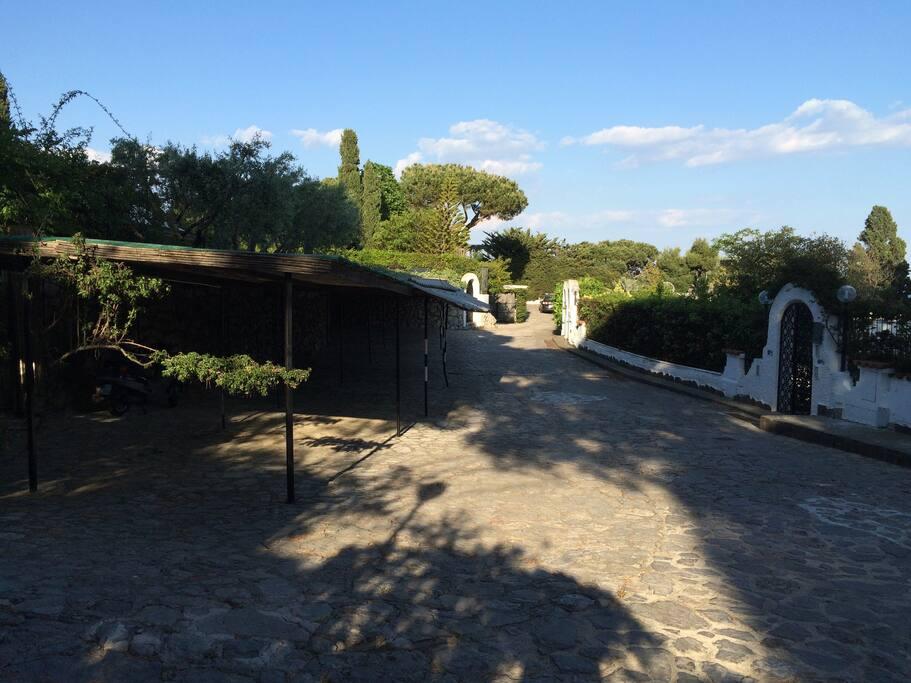mare montagna terrazzo giardino s felice circeo