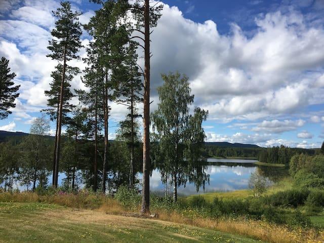 Welcome to Paradise - Tjärnmyra - Rumah
