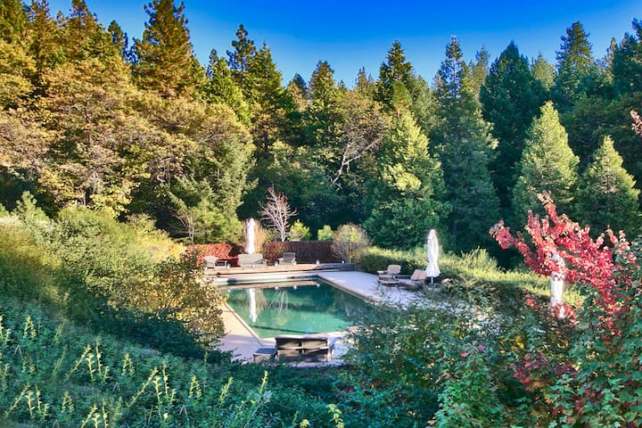 Country Luxury with Gorgeous Pool - Pioneer - Hus