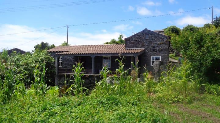 Casa da Alícia