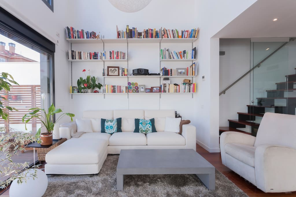 Couch and bookshelf