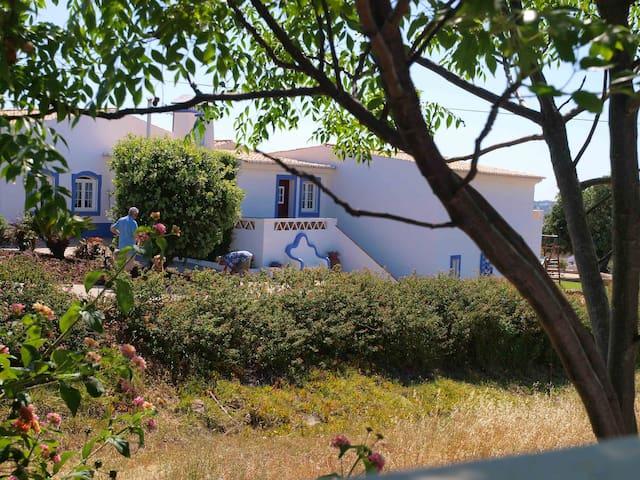 Casa do Montinho, inserido na Quinta dos Medronheiros é o Alojamento Local mais requisitado no Algarve, durante todo o ano.