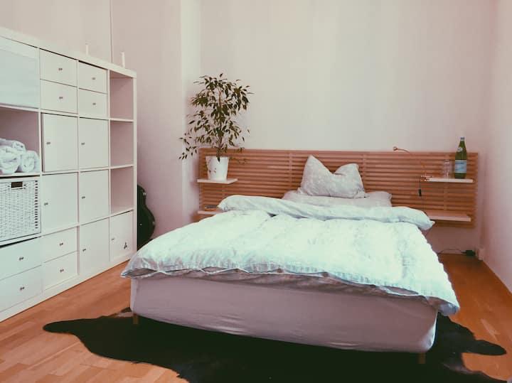 Private Room near University