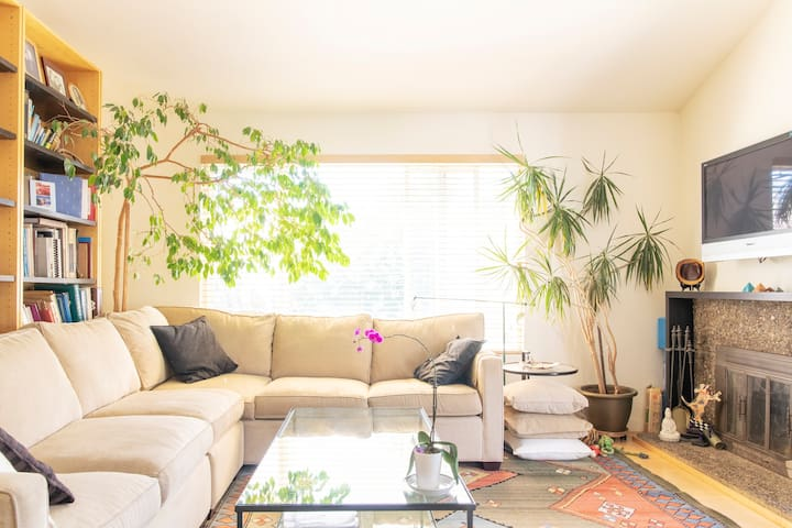 Comfy sofa in living room