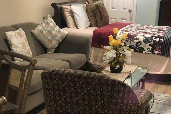 Cozy Comfortable Studio Suite