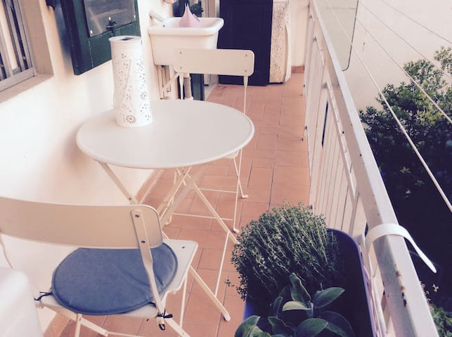apartment near the center (10 min. by tramway)
