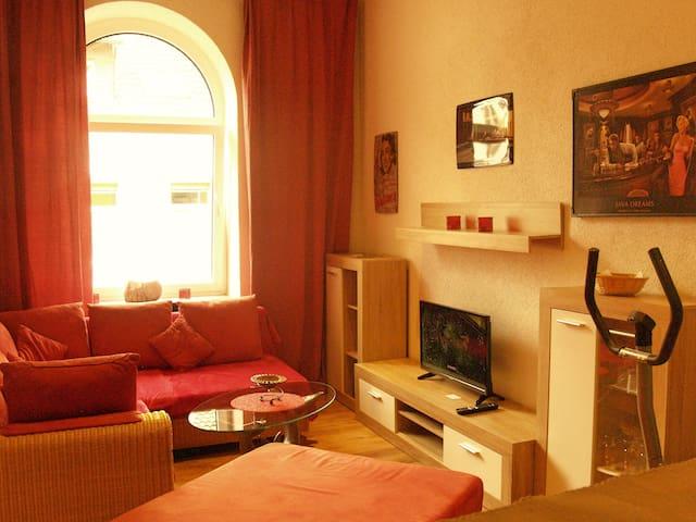 Schönes und helles zwei Zimmer Altstadtappartment - Kaiserslautern - อพาร์ทเมนท์