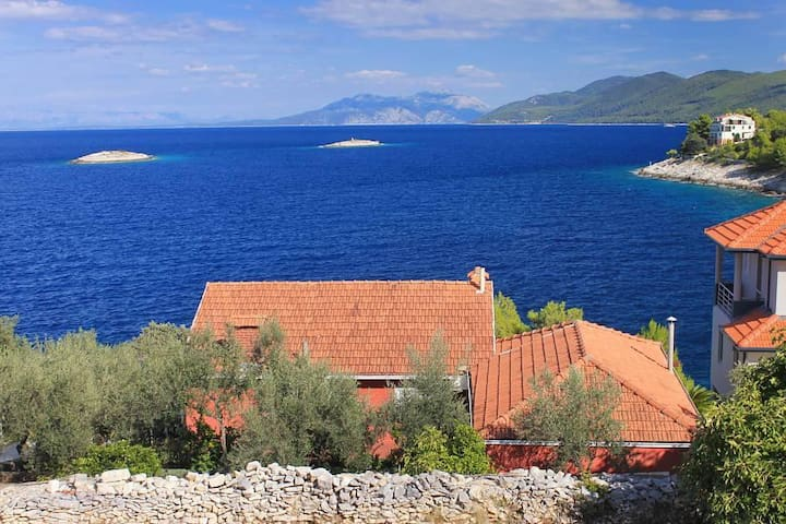 Two bedroom apartment near beach Prigradica, Korčula (A-9140-b) - Blato - Lejlighed