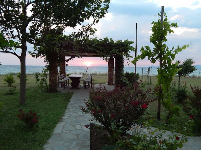 Seafront dream Villa at Gavriadia, Ierissos