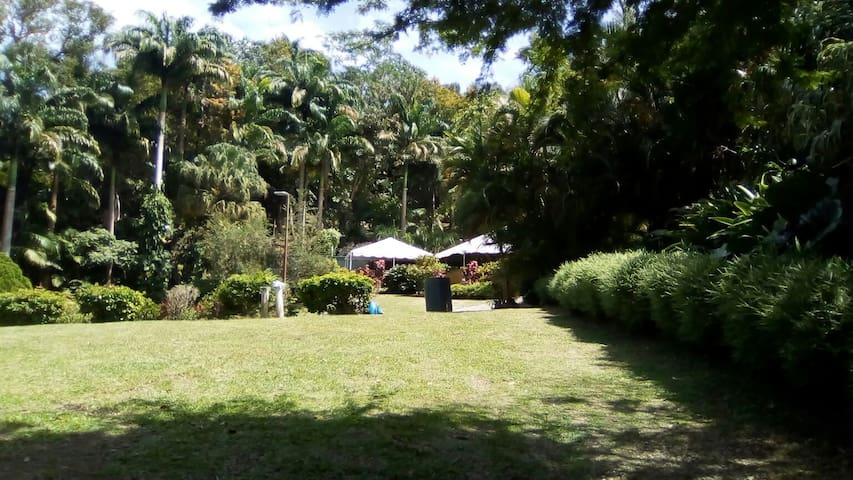 Camping @ Eco Camp Barbados