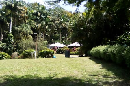 Camping @ Eco Camp Barbados - Tent
