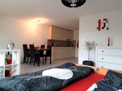 Gemütliche Einzimmerwohnung inkl. Küche und Bad