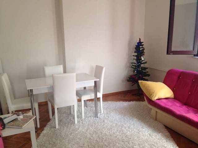 Room for girl for may/june Istanbul - Beşiktaş - Apartment