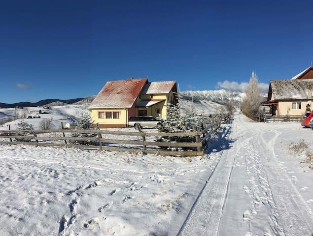 Vila Andrei