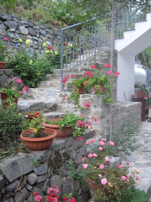 The stairs to Flora's house