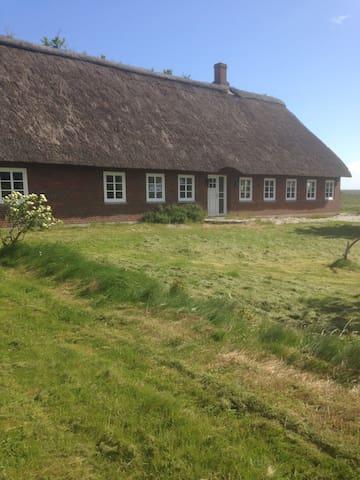 Sommerhus med udsigt over marker Rømø