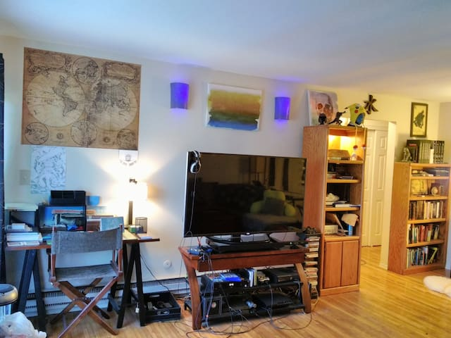Living and entertainment; hdtv, Fios, WiFi, gaming, Netflix, bluray