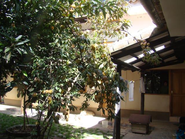 Fundo Orccococha - Finca Biodinâmica Agroecológica - Ollantaytambo - บ้าน