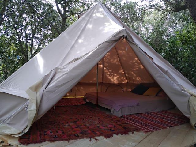 Nuitée sous tente saharienne