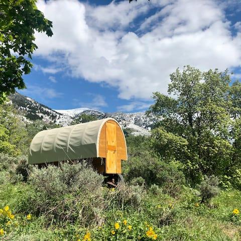 Cozy Sheepherder Canvas-Top Wagon