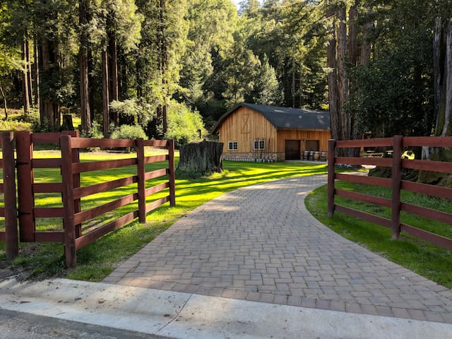 Beautiful and Peaceful Retreat in the Redwoods