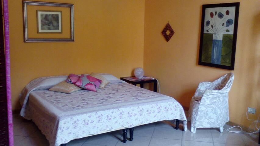 Ampio monolocale, nuovo, luminoso e centrale - Livorno - Bed & Breakfast