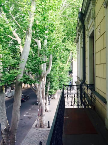 Between Bassiani and Fabrika in Theater District - Tbilisi - Apartment