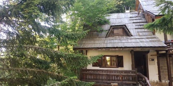 Mountain house Kovačević