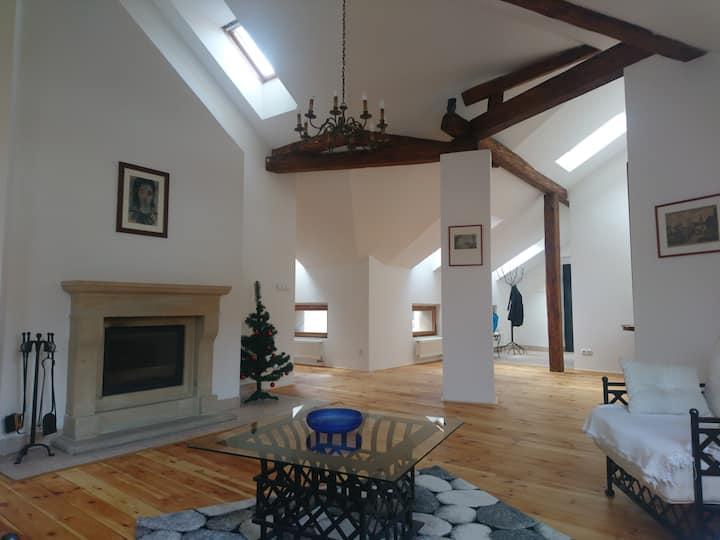 Luxusní mezonetový půdní byt v srdci Prahy u ND
