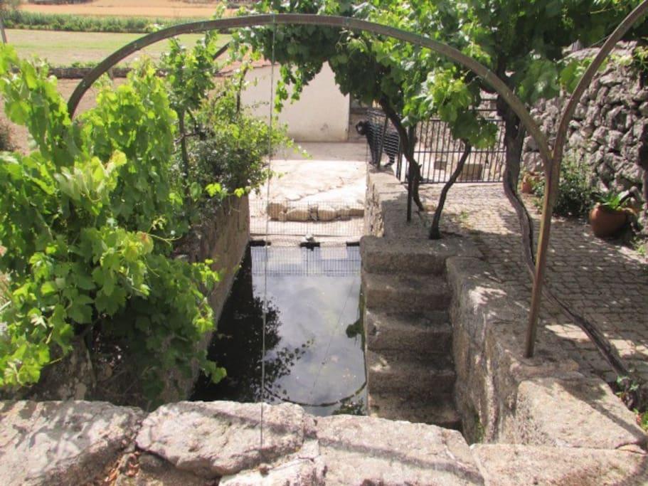 Mina de Agua da Quinta