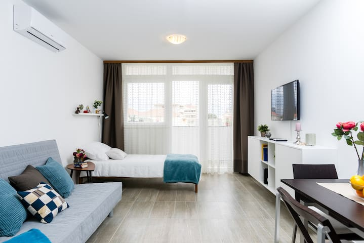 Studio Apartment Romana
