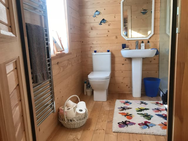 Good size bathroom with large walk-in shower.