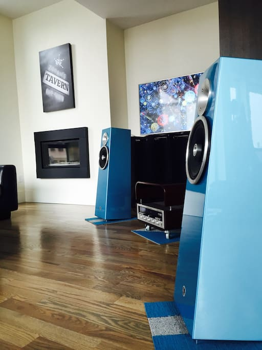 Zu Audio Soul Supremes.  You should definitely hang out with us in the living room and listen to some tunes!  These speakers are very special.