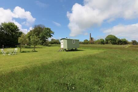 Trevoole Shepherd's Hut, Near Gwithian - Cornwall