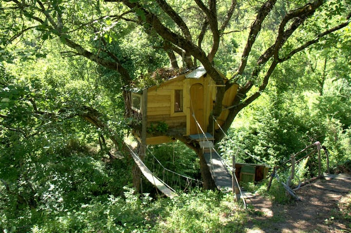 Real Tree Cabin on the river immersed in the woods