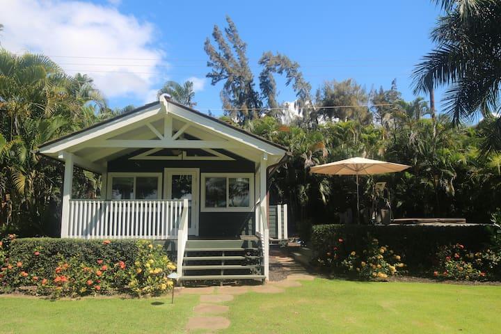 Oceanfront Bungalow - Wailuku - Domek gościnny