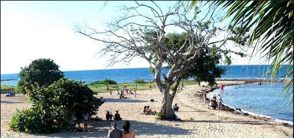 Playa Baracoa Ba A1(2) - Playa Baracoa - House