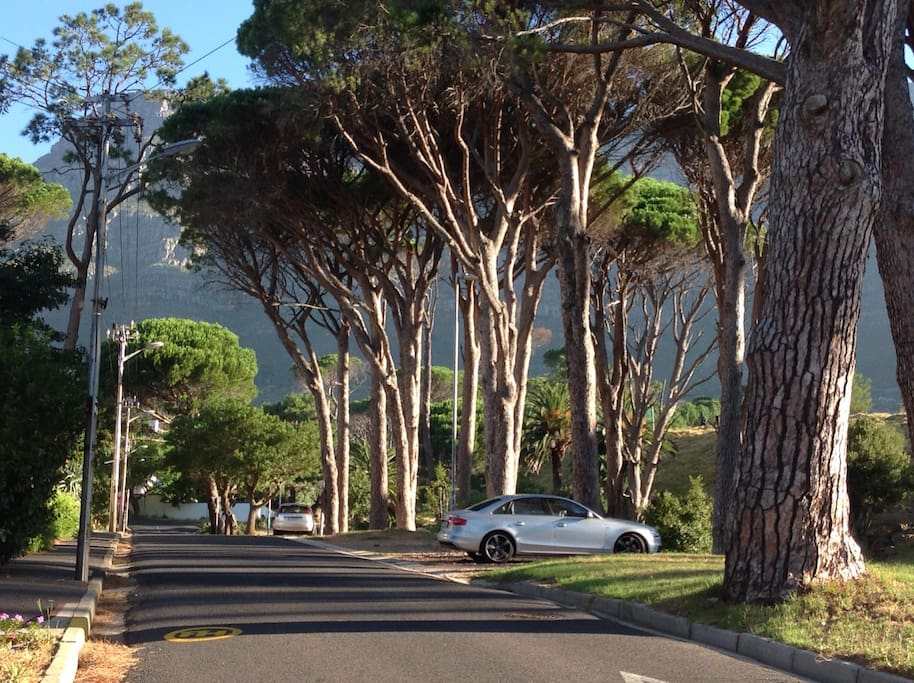 Capel Road is on the edge of Table Mountain Nature Reserve