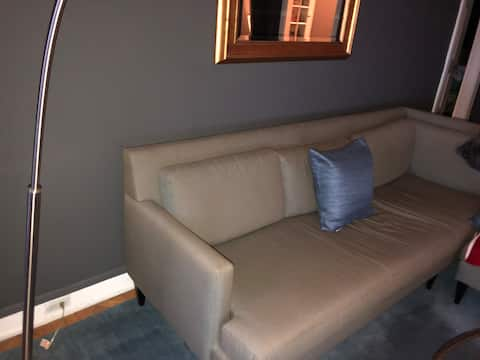 Beautiful 1 bedroom in the middle of the city!!