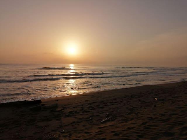 Super Chalet Coco Beach