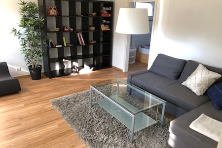 Cozy spacy apartment, just 25min to/from Zurich