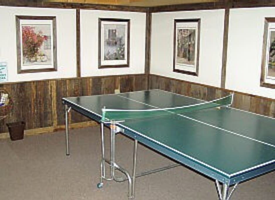 Lower level ping-pong / ski storage
