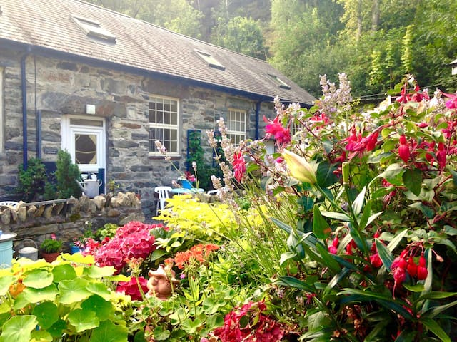 Cosy Country Cottage Snowdonia - Penmaenpool - House