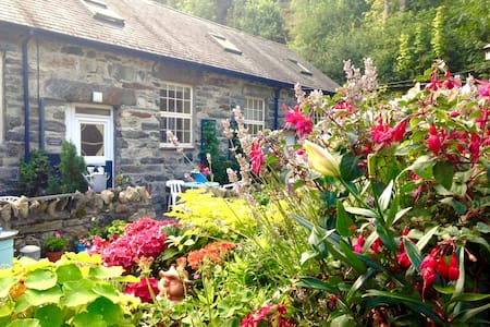 Cosy Country Cottage Snowdonia - Casa