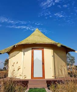 CAMPO崇明岛特色帐篷营地八角蒙古包1号