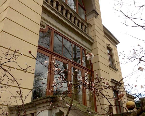 5-Raumwohnung in historischer Villa